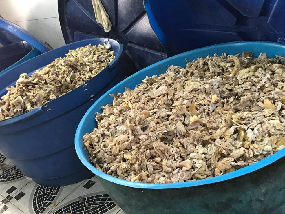 Parte do material foi encaminhado para a perícia, outra foi aprendida e descartada no lixão; Manaus (Foto: Divulgação/Polícia Civil)