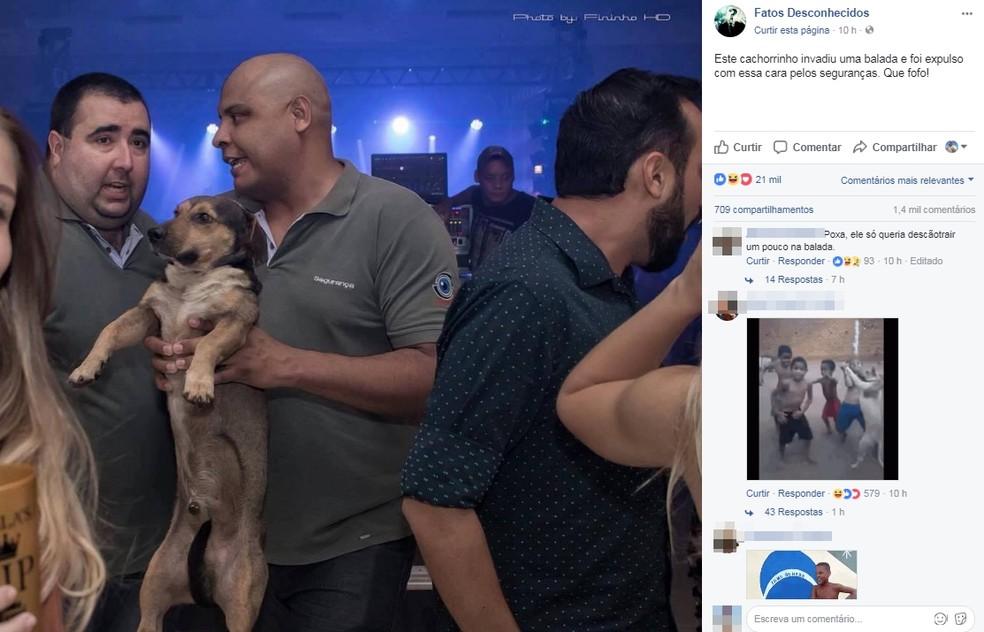 Foto ganhou as redes sociais. Em um perfil do Facebook teve 21 mil curtidas (Foto: Reprodução/Facebook)
