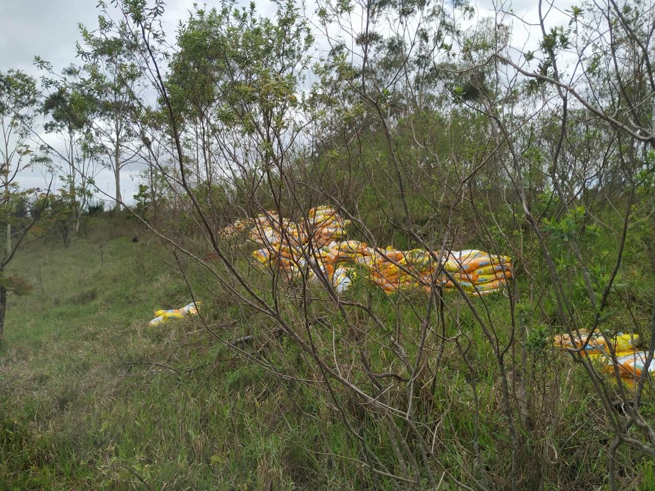 PRF é acionada para atender tombamento de carreta com carga em Campos Altos e prende três pessoas que tentavam saquear material