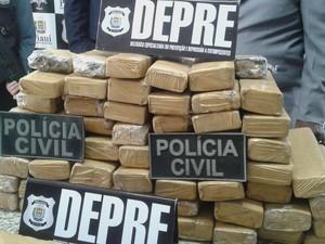 Parte da droga seria levada por mula para São Luís (Foto: Catarina Costa / G1 PI)