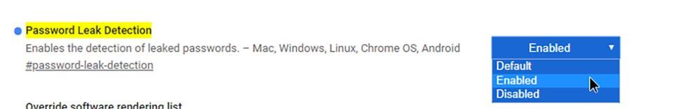 Ativando o 'Password Leak Detection', Chrome avisará se suas senhas foram comprometidas. — Foto: Reprodução
