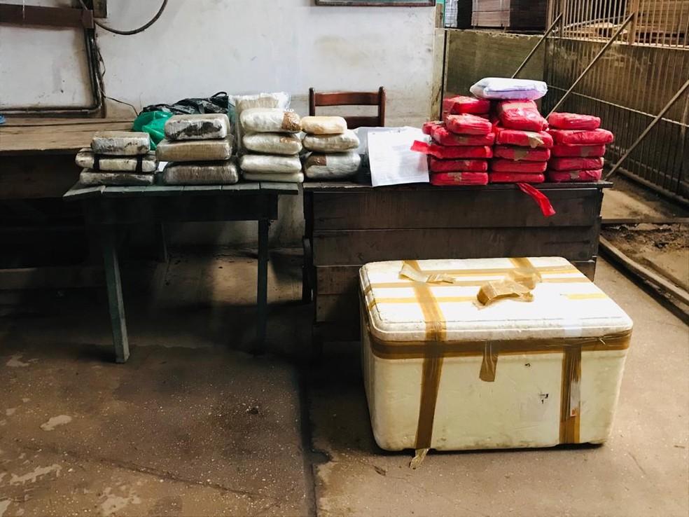 75 kg de drogas de apreensões em Santarém e Juruti são incinerados pela Polícia Cívil — Foto: Kamila Andrade/G1