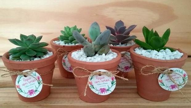 Lembrancinhas com plantas: Vasos de barro são tradicionais e conquistam qualquer um  (Foto: Pinterest/Reprodução)