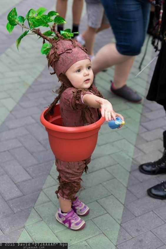 Groot (Foto: Pinterest)