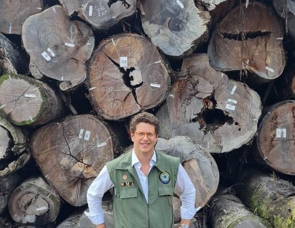 O ministro do Meio Ambiente, Ricardo Salles, atestou suposta origem legal de toras madeira apreendidas no Pará; superintendente rebateu afirmação e disse que Salles pretendeu 'atuar como perito'