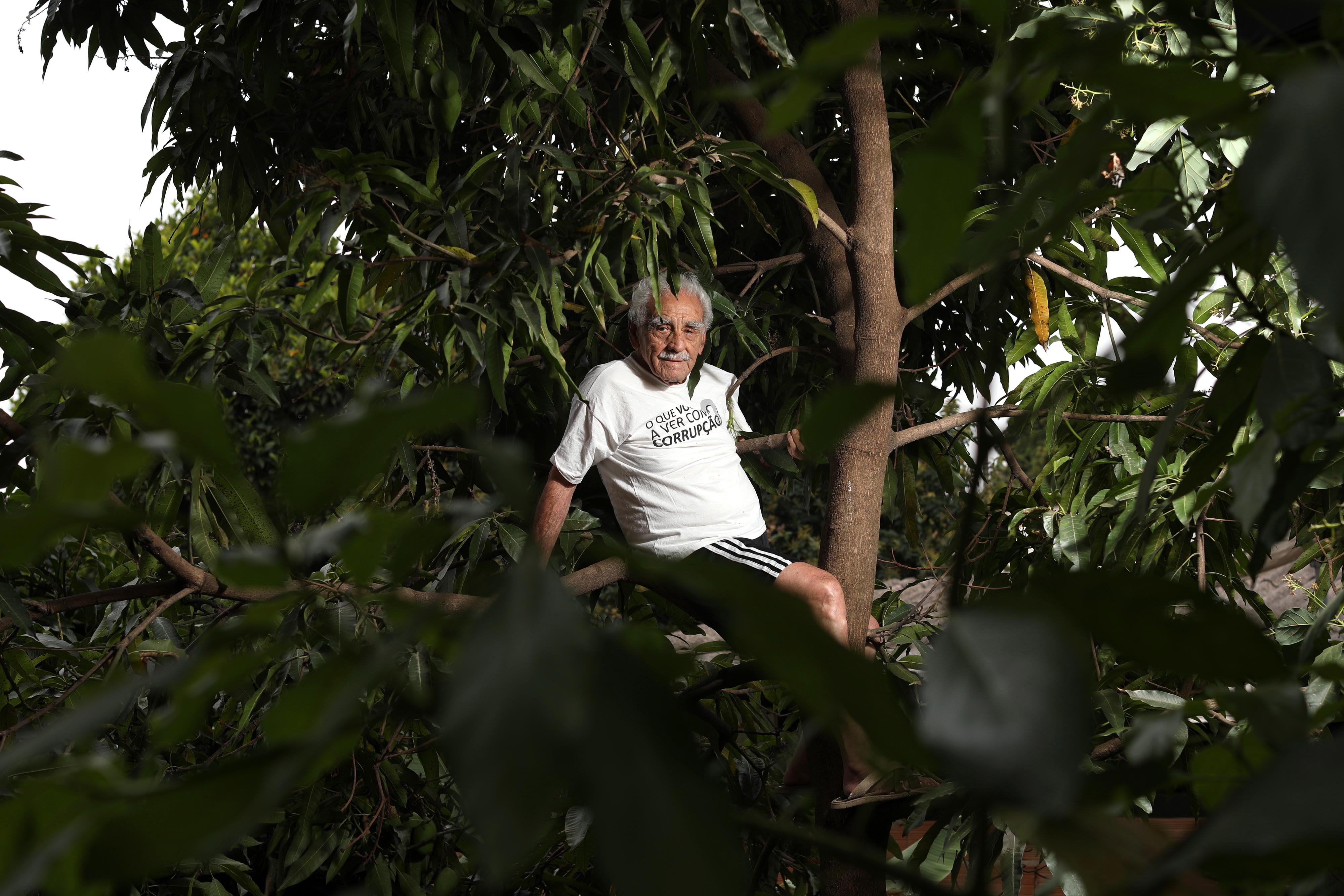 Seu Geraldo no abacateiro: vida ativa