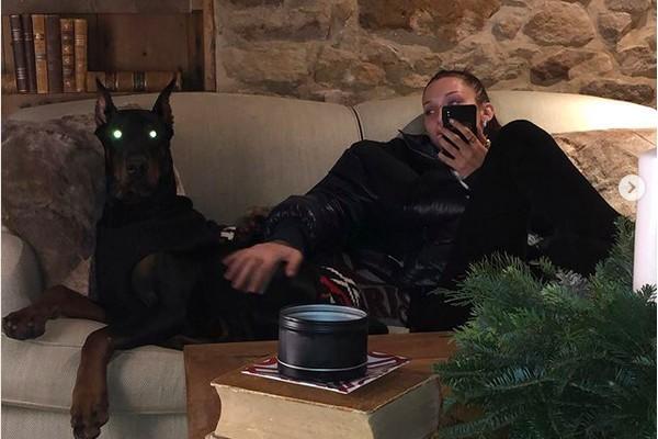 A modelo Bella Hadid com um dos cachorros que tem com o namorado, o rapper The Weeknd (Foto: Instagram)