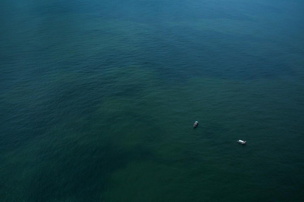 Corais se estendem por extensa área na costa brasileira — Foto:  ©Victor Moriyama/Greenpeace