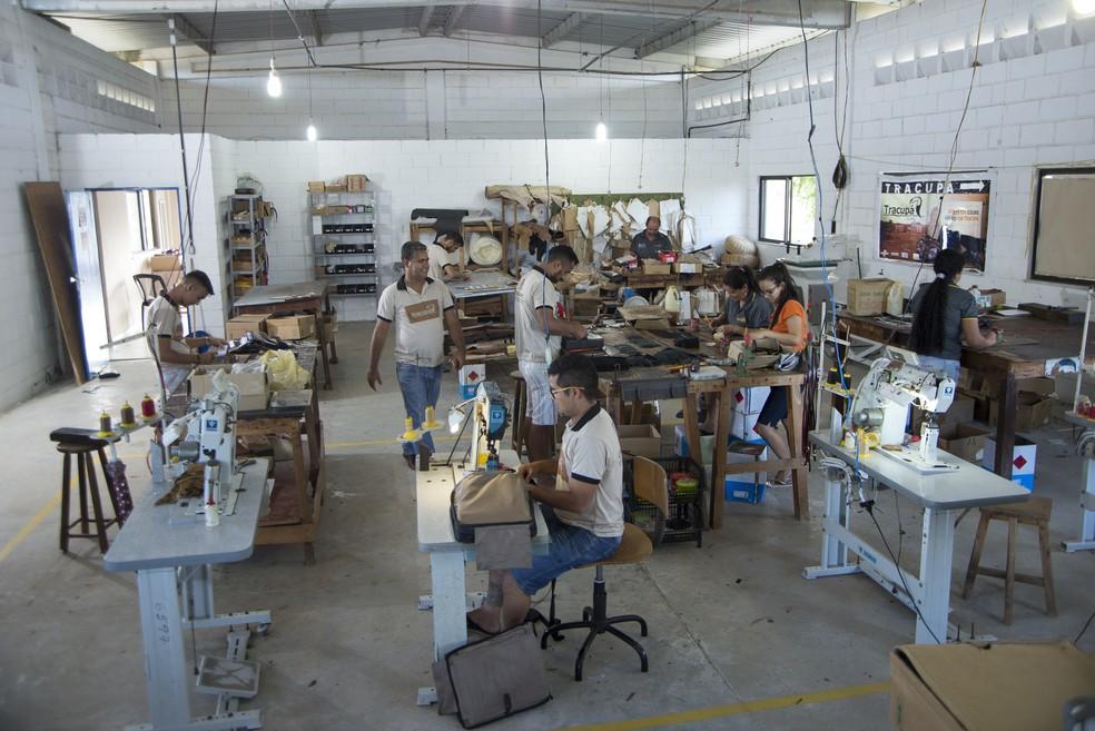 ed5ce0e6d Cooperativa de couro alça novos mercados   Empresários baianos se ...
