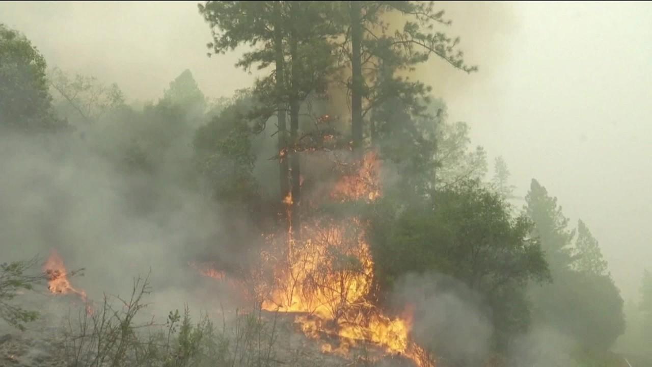 Eleições americanas: Trump vai visitar região afetada por incêndios na Califórnia