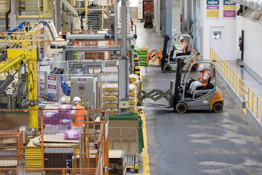 Funcionários trabalham em fábrica de ração, em Guararema (SP). (Foto: Marcelo Brandt/G1)