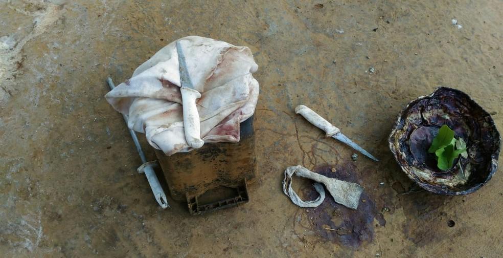 Instrumentos cortantes e couro animal foram apreendidos na zona rural de Glaucilândia — Foto: IMA/ Divulgação