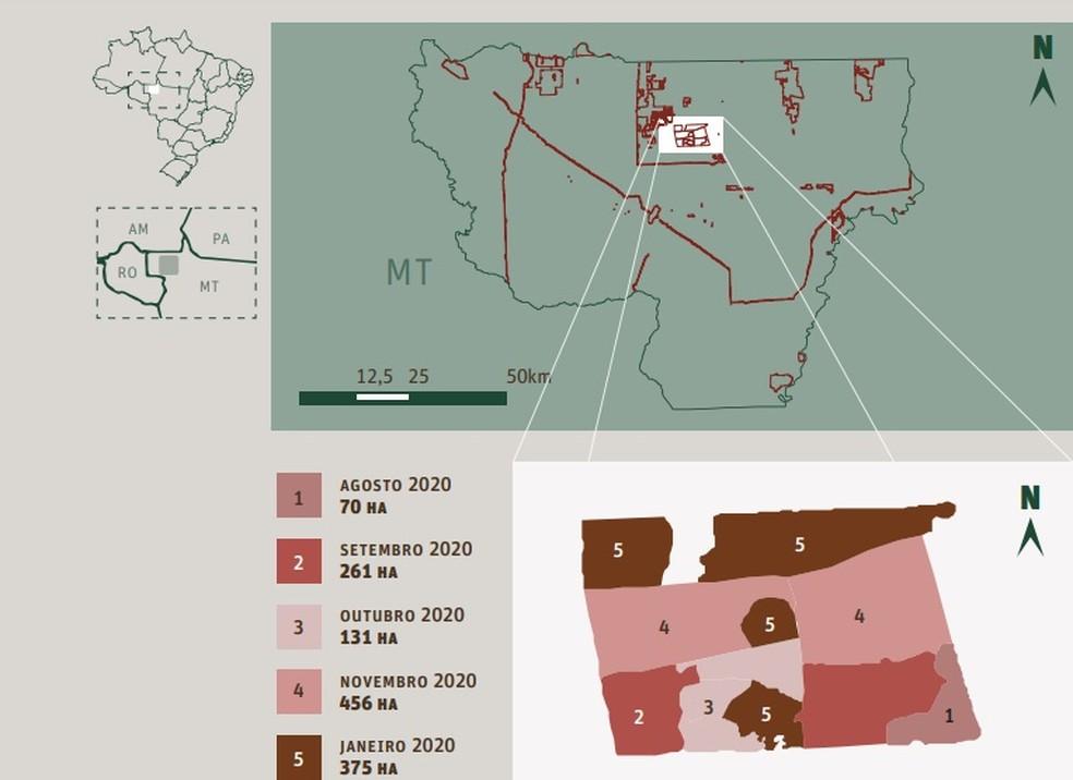 A Terra Indígena Piripkura, localizada nos municípios de Colniza e Rondolândia, a 1.065 e 1.600 km de Cuiabá, foi a mais desmatada em 2020 dentre os territórios com presença de povos indígenas isolados monitorados pelo Instituto Socioambiental (ISA) — Foto: Instituto Socioambiental (ISA)