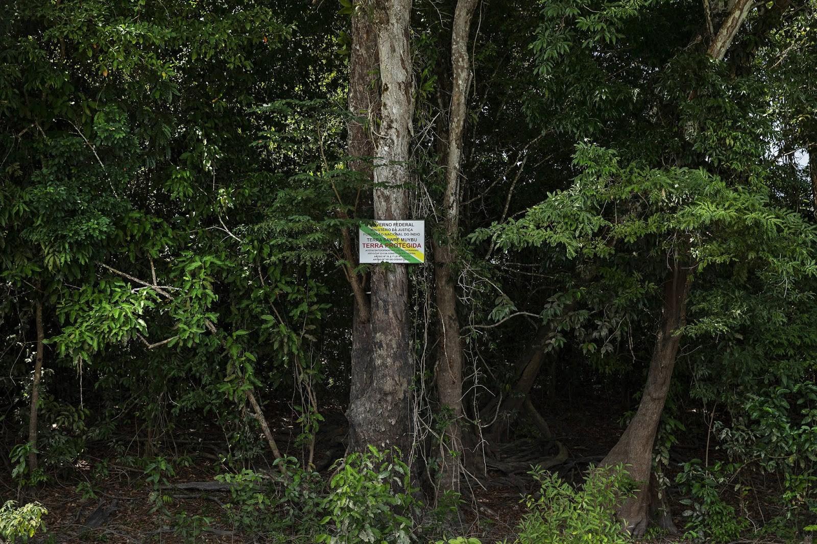 MPF pede que Justiça suste efeitos de portaria da Funai que permite a grilagem de 37 terras indígenas no PA