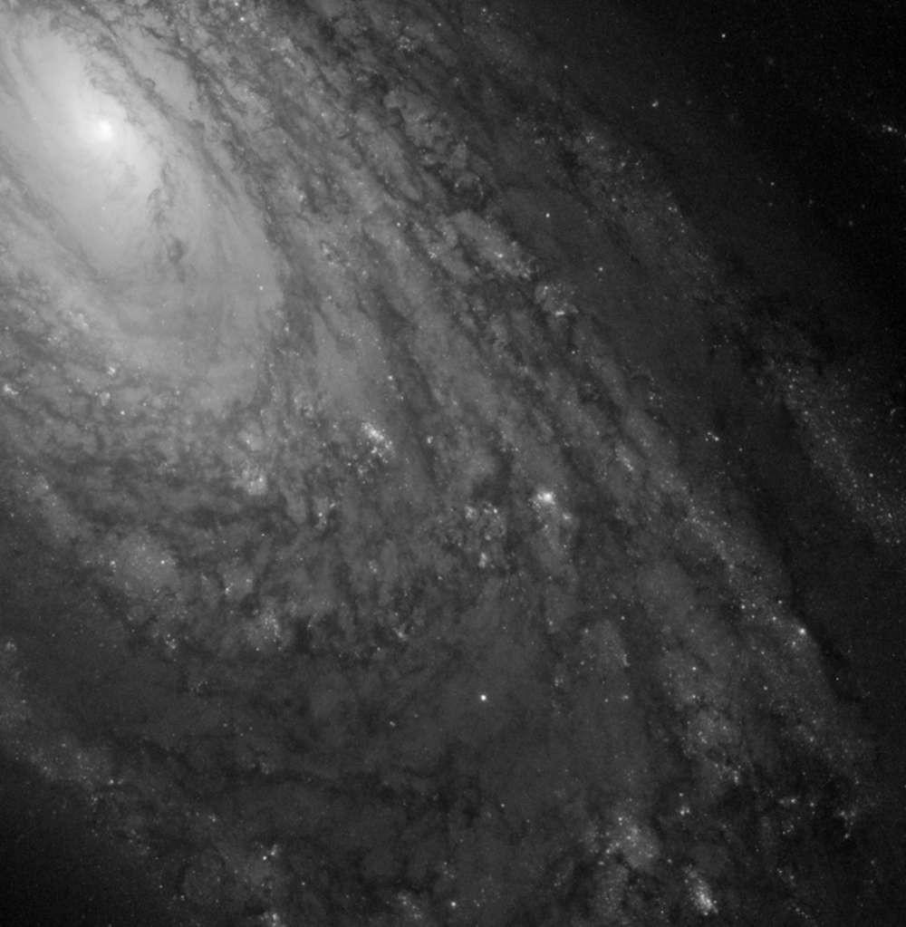 M88 está há 47 mil anos-luz de nós (Foto: NASA)