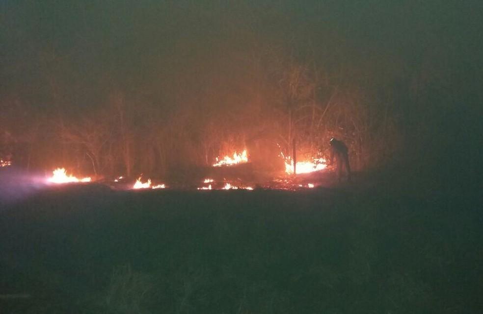 Em Cuiabá, foram 213 pontos de queimadas (Foto: Corpo de Bombeiros-MT/ Assessoria)