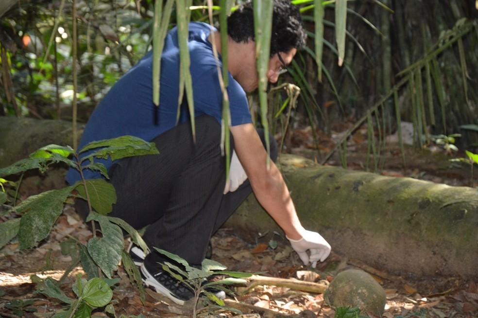 Polícia Civil de RO encontrou em junho deste ano uma ossada humana Buritis, mas não era Tainá — Foto: Edson Nascimento/TBN notícias