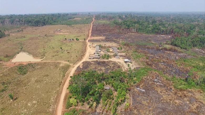 tv-desmatamento-amazonia-floresta-destruicao- (Foto: Reprodução/ TV Globo)