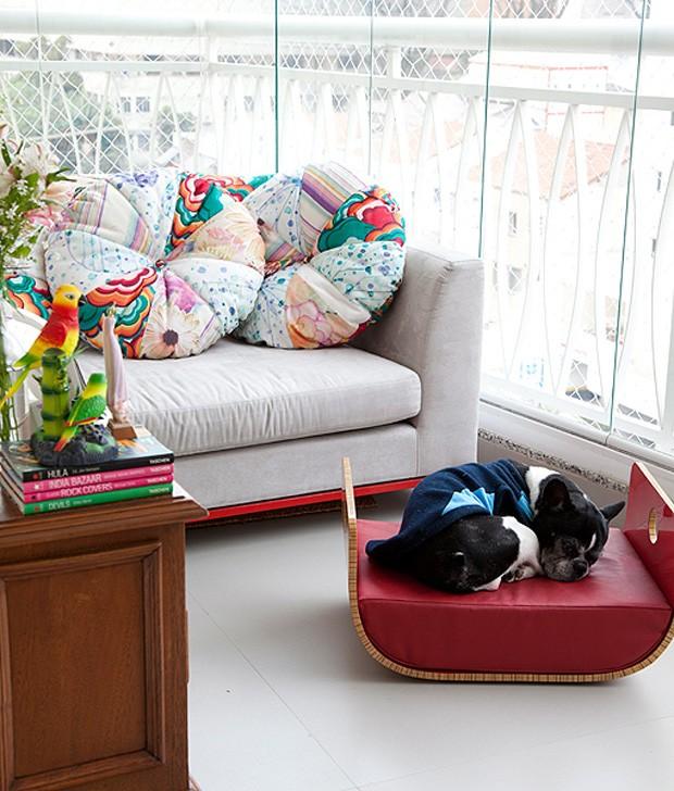 Elegante, a cama do buldogue francês Tião foi comprada em uma loja de design, em São Paulo, pelo casal de proprietários, os publicitários Carlos e Ana Paula (Foto: Fran Parente / Casa e Jardim)