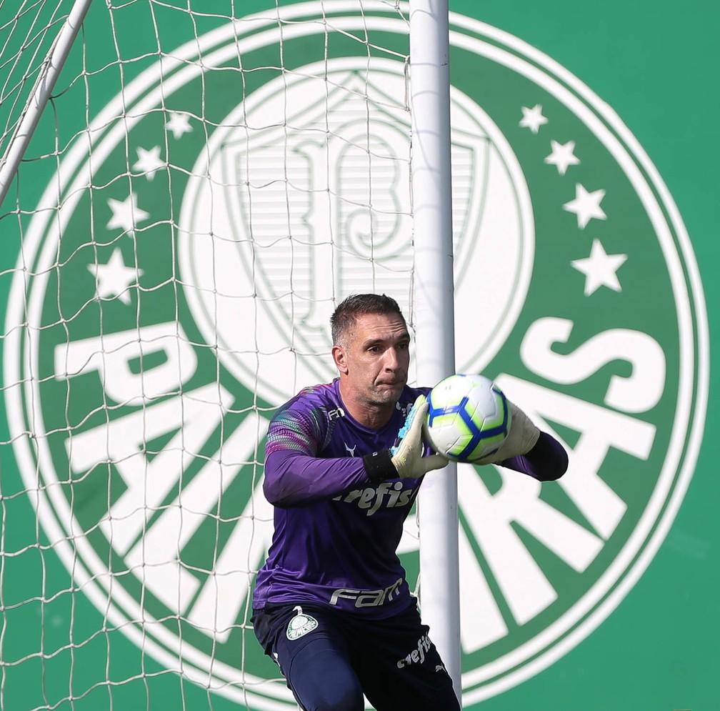Fernando Prass tem contrato só até o fim de 2019 — Foto: Cesar Greco / Ag Palmeiras