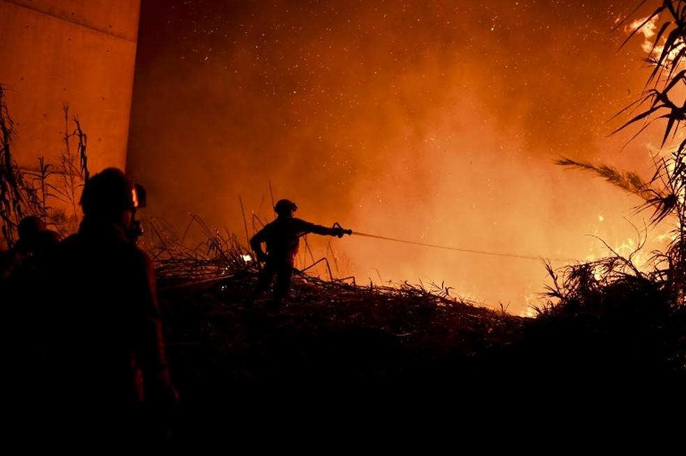 Bombeiros tentam controlar incêndios florestais em Portugal (Foto: France Presse)