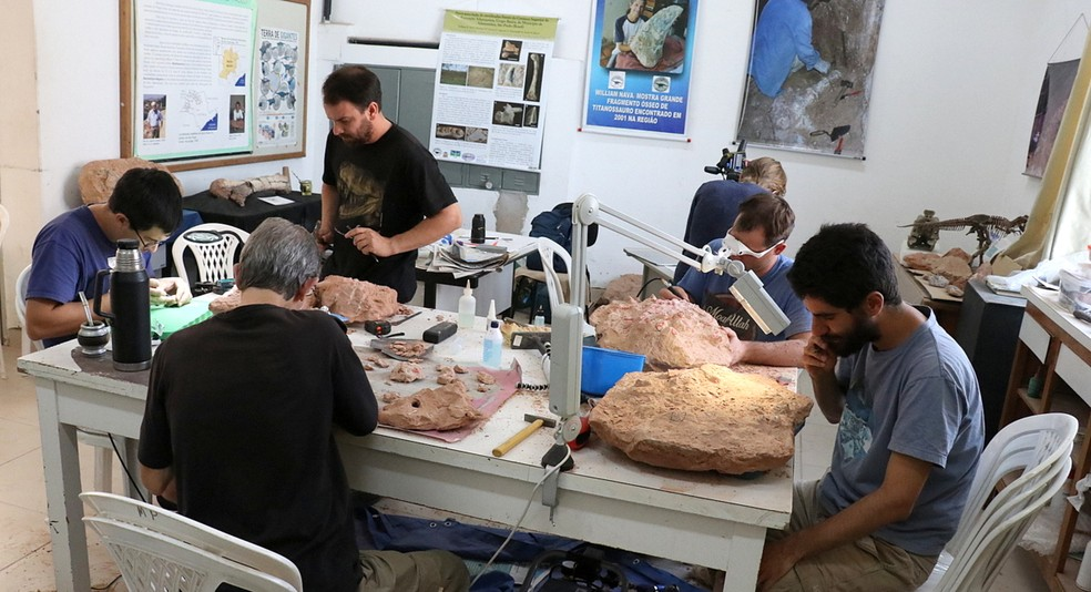 Equipe de pesquisadores preparando fósseis no Museu de Paleontologia de Marília, em 2019, quando chegaram descobertas de Presidente Prudente — Foto: Mariana Agostinho/Arquivo pessoal