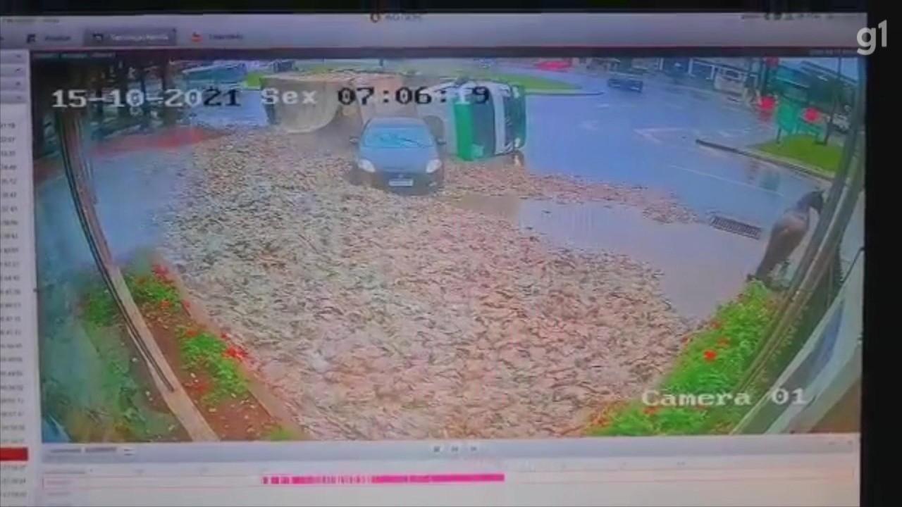 Caminhão tomba e derruba carga de restos de peixe em Passo Fundo; VÍDEO