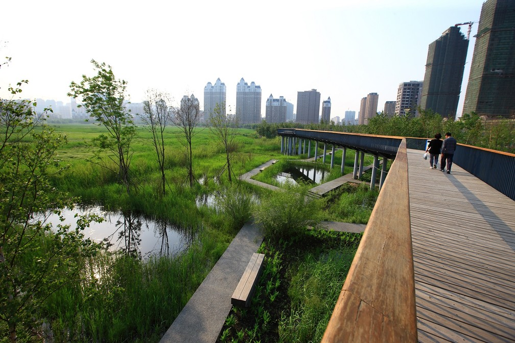 Parque alagável de Qunli, na China, criado para reter, filtrar e devolver ao solo a água da chuva — Foto: Turenscape/Divulgação