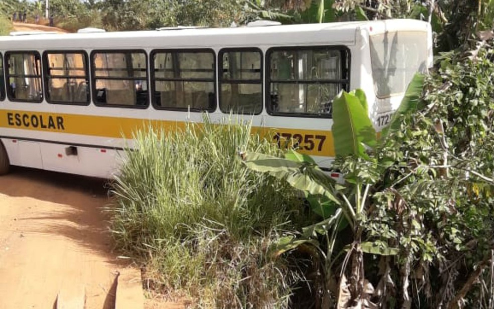 Motorista de ônibus escolar bate em árvore após veículo perder freios ao levar estudantes na BA — Foto: Arquivo pessoal