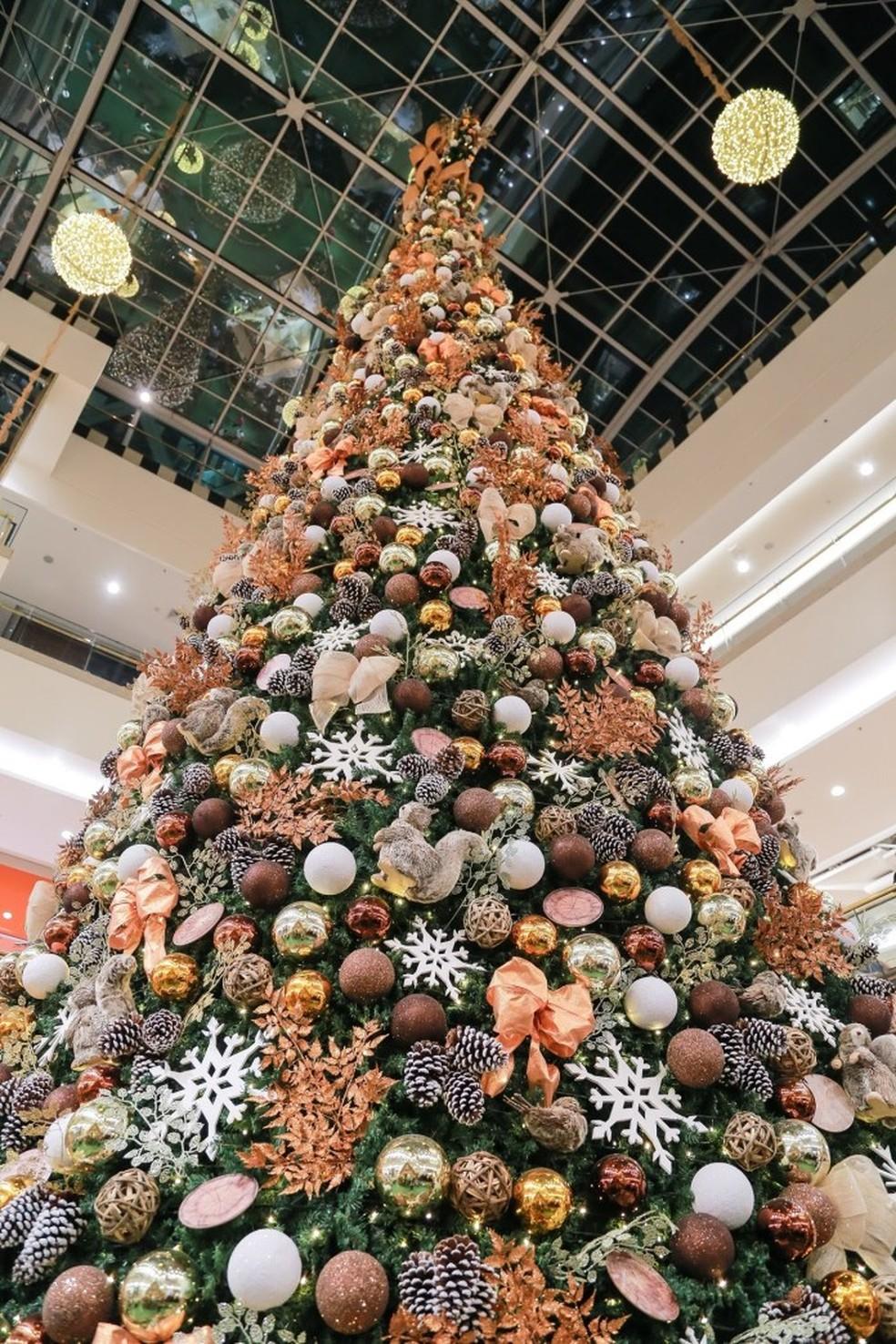 Árvore de Natal do Shopping Pátio Brasil, no DF, onde tem apresentação de peça infantil gratuita — Foto: Pátio Brasil/ Divulgação