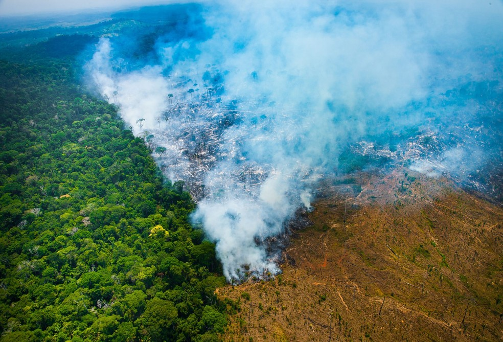 Amazônia — Foto: Imazon