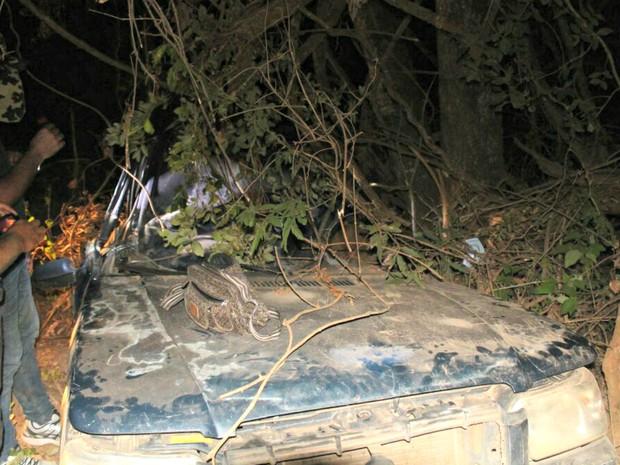 Carro da família saiu da pista, capotou e bateu em árvore (Foto: Corpo de Bombeiros/ Divulgação)
