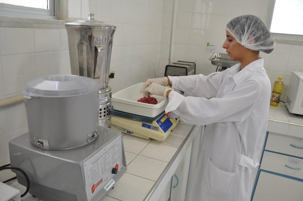 IFCE abre 500 vagas em cursos gratuitos no Ceará (Foto: Divulgação)