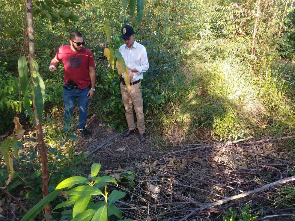 Corpo foi encontrado em uma propriedade rural de Itatinga — Foto: Polícia Civil/Divulgação