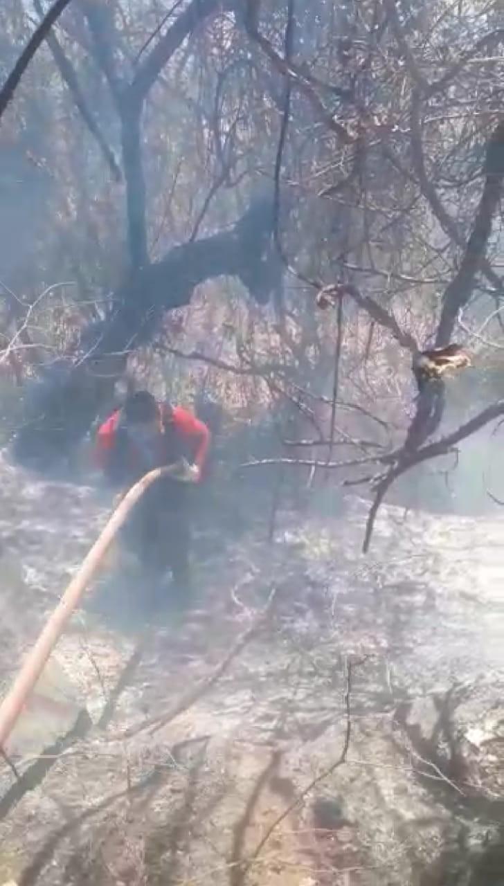 Vinte bombeiros combatem incêndio na Serra do Sapucaia, em Montes Claros - Notícias - Plantão Diário