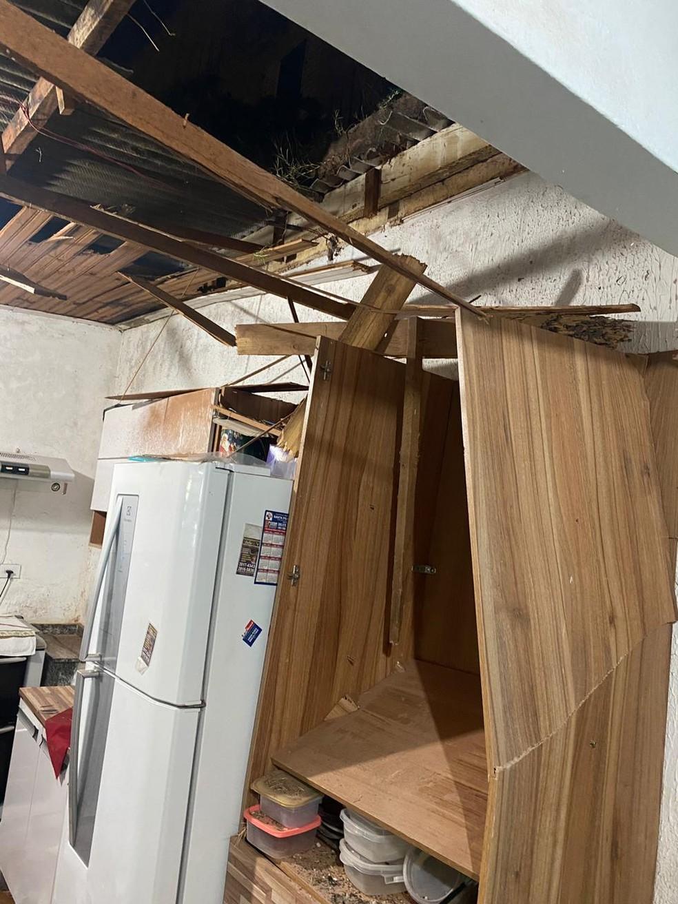 Cavalo caiu do telhado e parou na cozinha de uma casa em Presidente Prudente — Foto: Cedida/CCZ