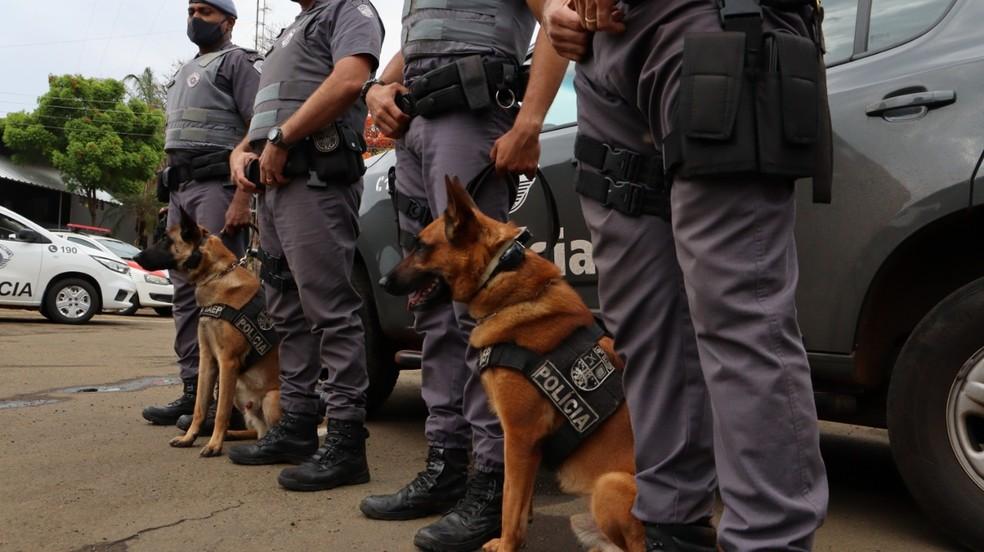 Equipe do canil participou de operação em Pirassununga — Foto: Polícias Civil e Militar/Pirassununga