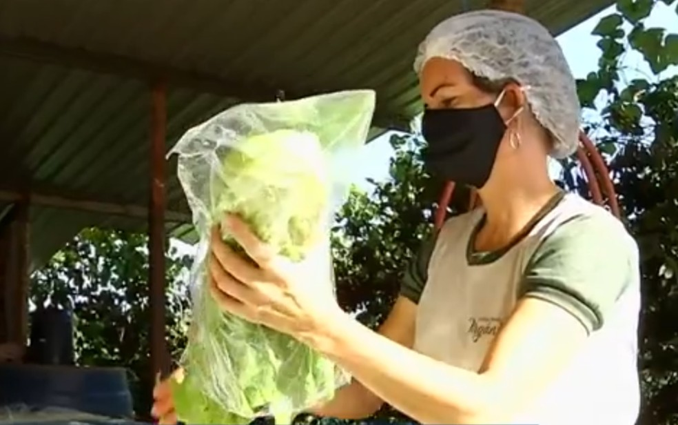 Horaliças, verduras e frutas vendidas na Barraca da Honestidade Goiás — Foto: Reprodução/TV Anhanguera