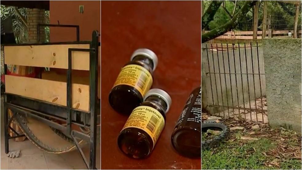 Anabolizantes, medicamentos, uma esteira adaptada para treinamentos e uma piscina foram encontrados na chácara em Itu — Foto: Reprodução/TV TEM