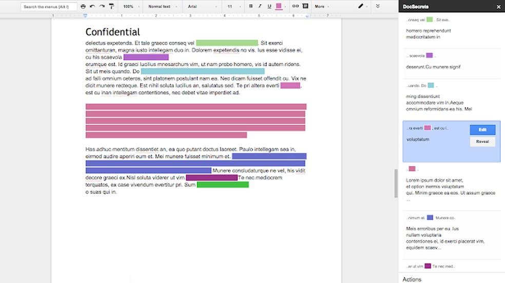 DocSecrets protege trechos do texto com senha — Foto: Reprodução/Chrome Web Store