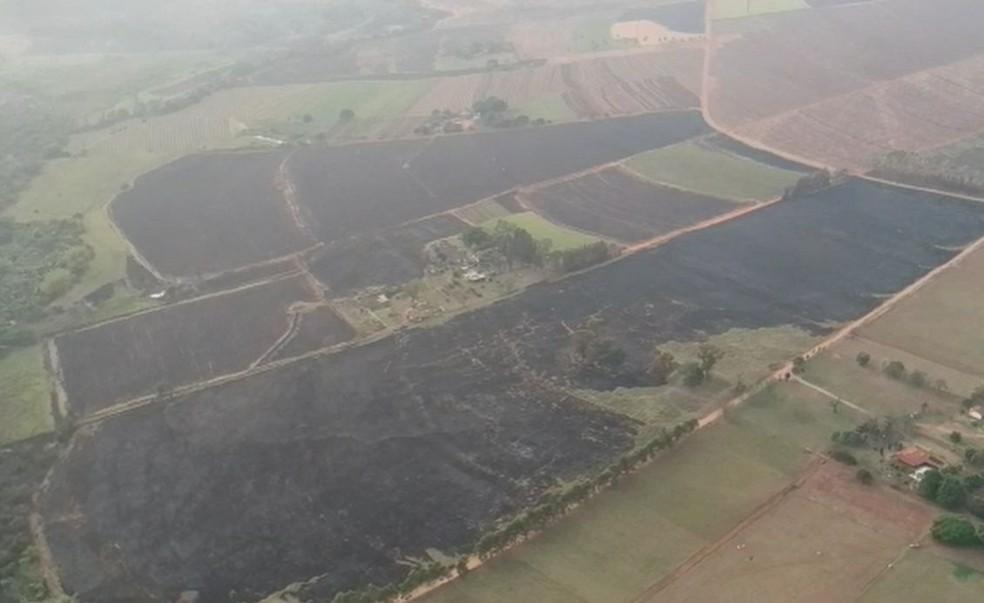 Área equivalente a cerca de 500 campos de futebol foi atingida na região de Jaú  — Foto: Central de Notícias / Divulgação