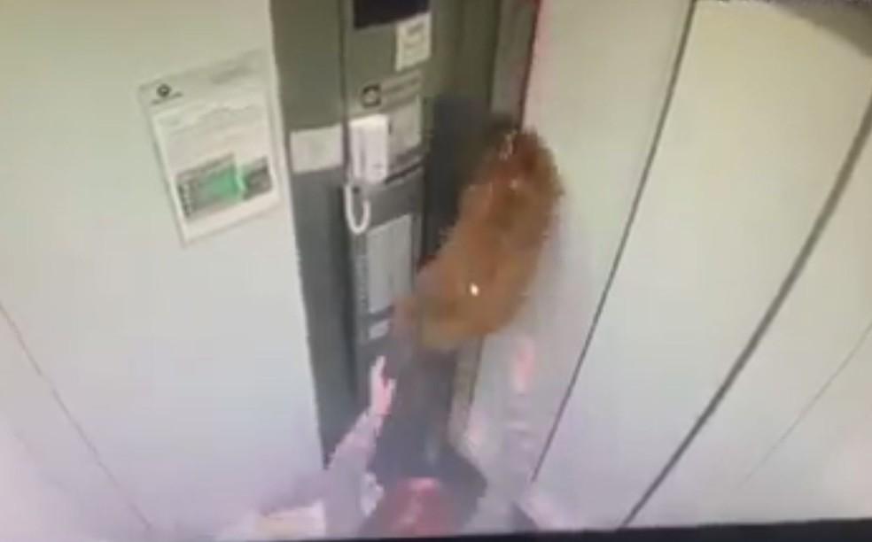 Mulher correu para socorrer cachorro que ficou pendurado ao ser puxado por elevador em movimento — Foto: Reprodução/Facebook/Boca no Trombone PG