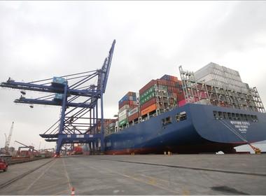 guidaste navio porto tcp (Foto: Divulgação/ TCP)