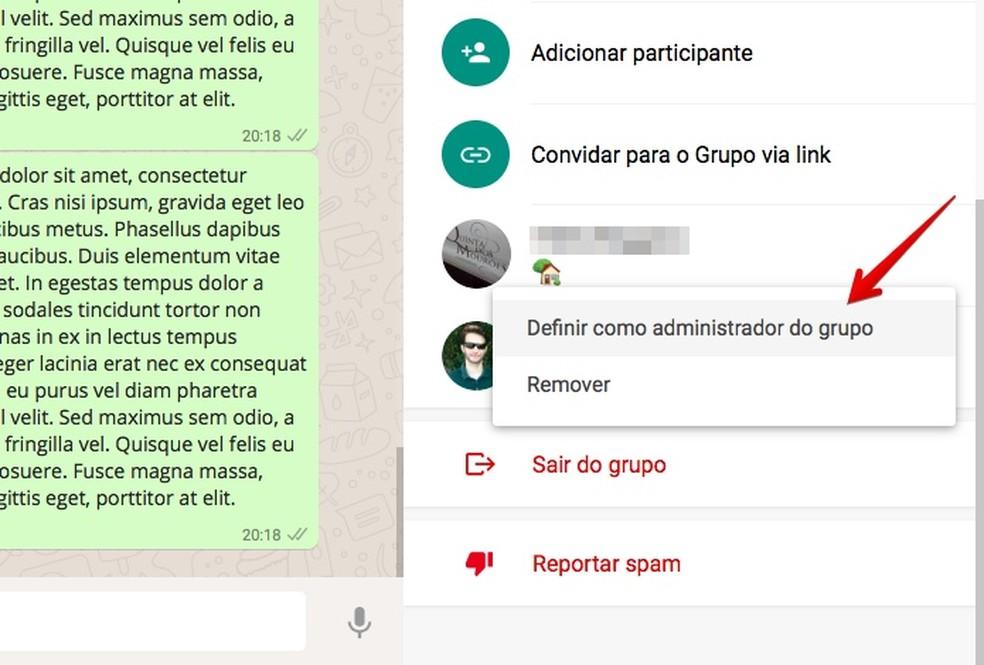Adicione um administrador no grupo pelo WhatsApp Web (Foto: Reprodução/Helito Bijora)