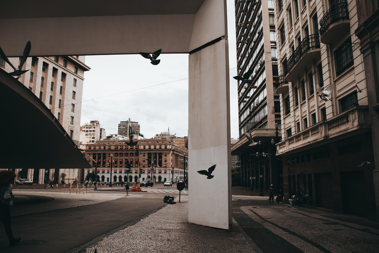 Sistema usa inteligência artificial para prever ocorrências de crimes em áreas urbanas. Acima: centro da cidade de São Paulo (Foto: C. Cagnin/Pexels)