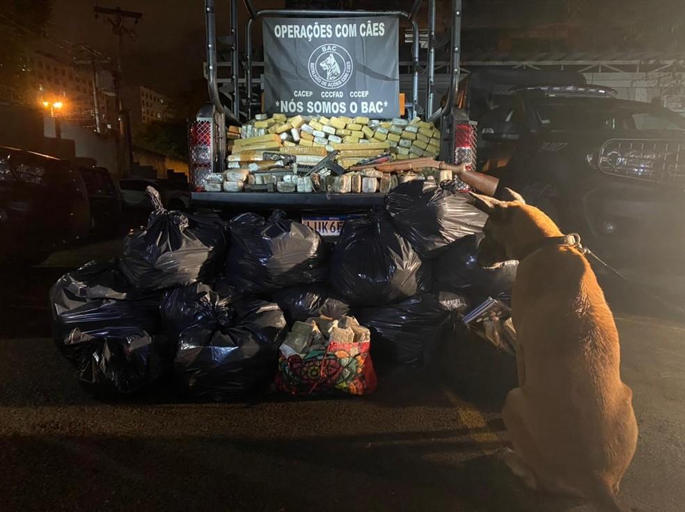Uma cadela do Batalhão de Operações com Cães (BAC) da Polícia Militar encontrou mais de uma tonelada de drogas na noite de quinta-feira (13) no Jacaré, na Zona Norte do Rio — Foto: Divulgação/ Polícia Militar