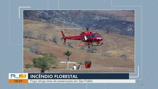 Fogo atinge área de preservação em São Fidélis
