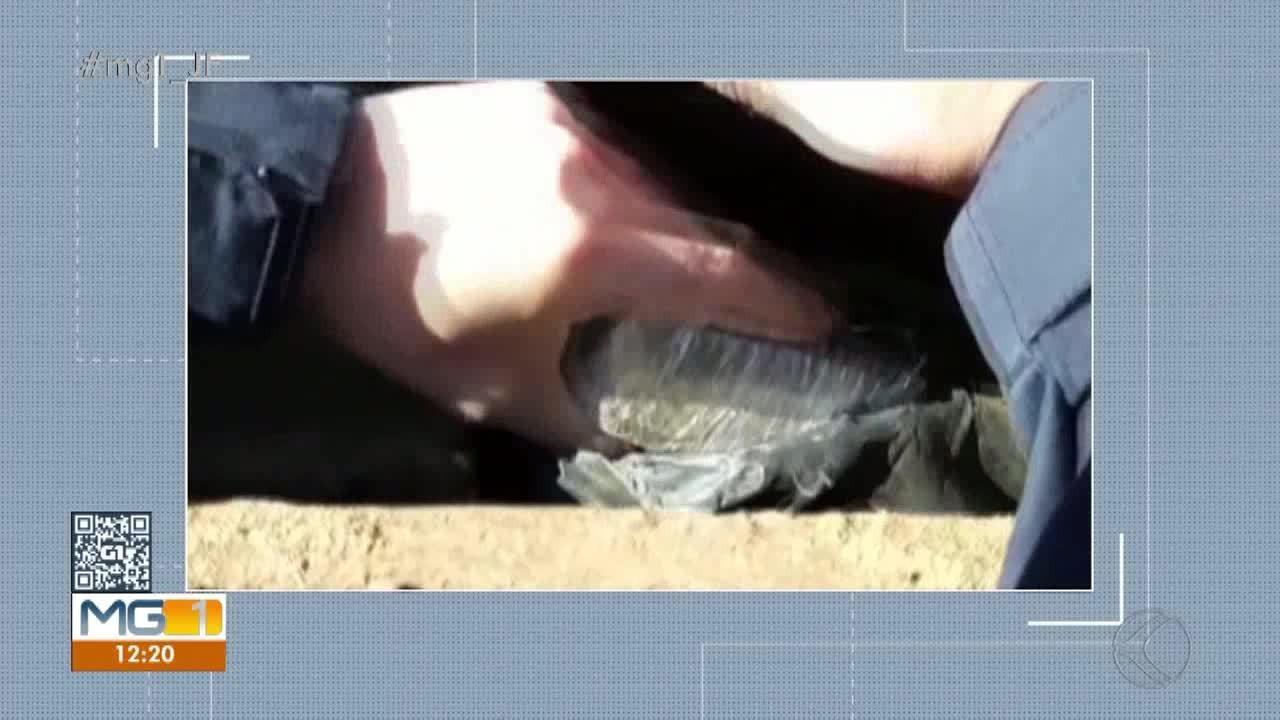 Homem é preso com drogas e uma pistola .765 em Pacajá, no Pará - Notícias - Plantão Diário