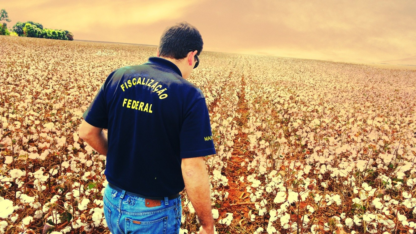Fiscalização de biossegurança de lavoura de algodão (Foto:  FFA Hugo Caruso/ ANFFA)