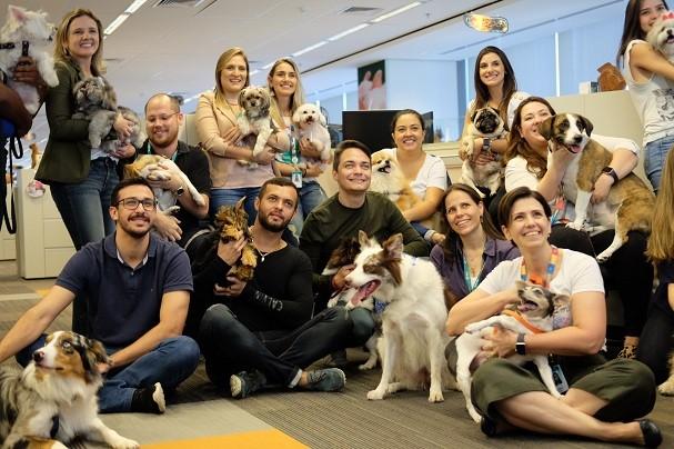 Empresa em SP cria Pet Day e permite que funcionários levem seus cachorros ao escritório (Foto: Divulgação)